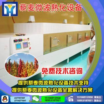 专业生产瓜子微波烘干杀菌设备 微波杀虫设备