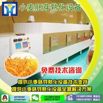 供应XH-15KW经济型隧道式瓜子微波熟化设备不锈钢干燥杀菌机