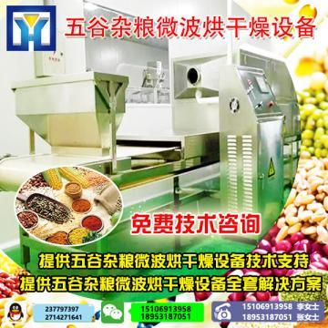 2018新一代黄豆烘烤熟化设备